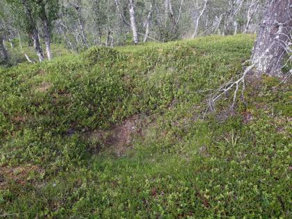 Kolgrop Fet i Eidfjord