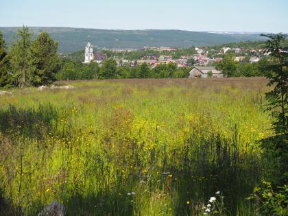 Utsikt mot gruvebyen fra Småsætran